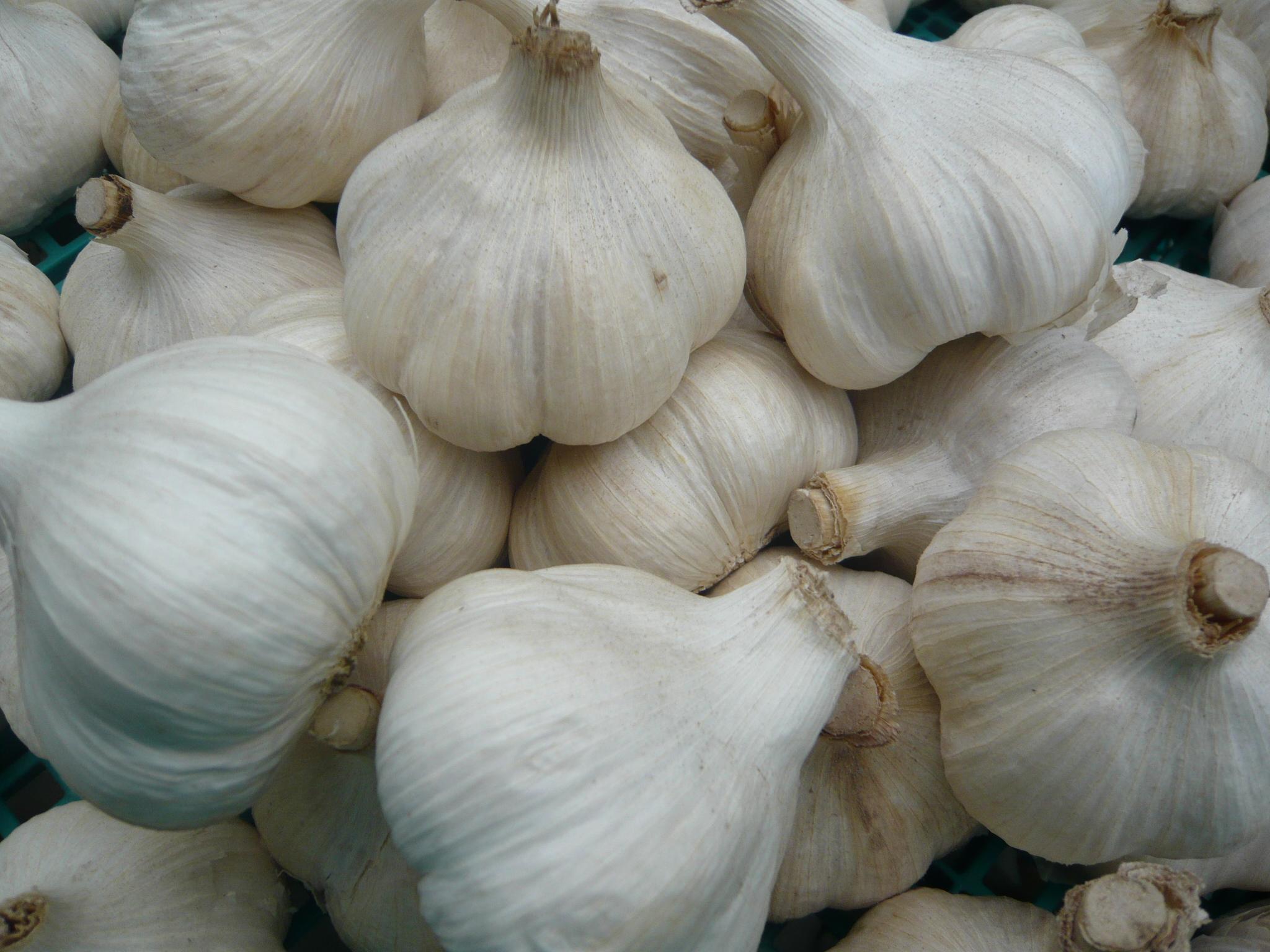 にんにく九州ナンバーワン。熟成黒にんにく、にんにく自社・契約生産加工品及び九州の野菜の卸販売:八片にんにく